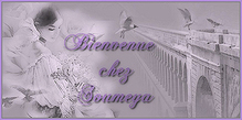 Petite bannière Blog de Soumeya