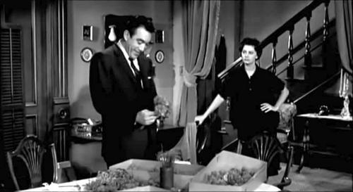 L'orchidée noire, The black Orchid, Martin Ritt, 1959