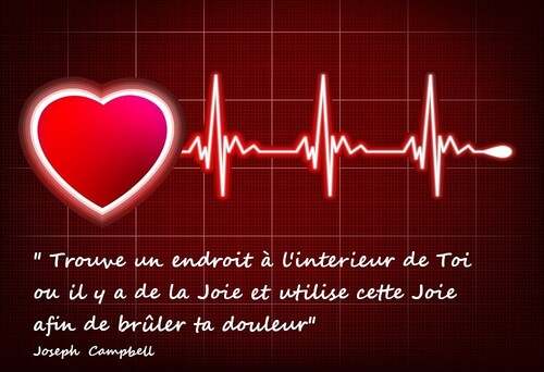 MA  PROFESSION  :  INFIRMIERE
