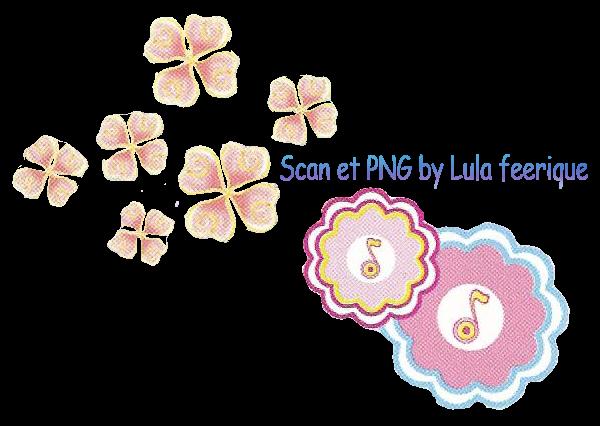Fleurs-de-Musa