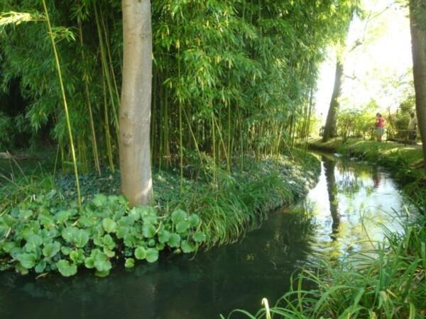 Giverny, le jardin de Monet 3