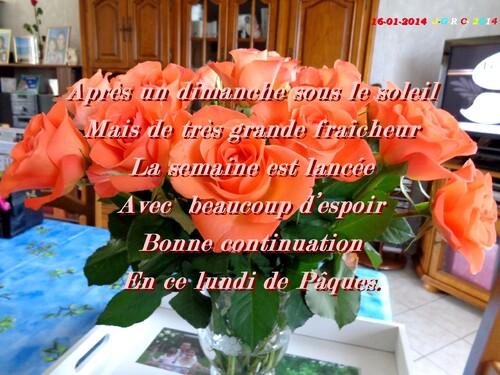 VACANCES  VIC LA GARD 34   2-12/09/2009   STES MARIES  13  2/2   D  07/05/2015  R