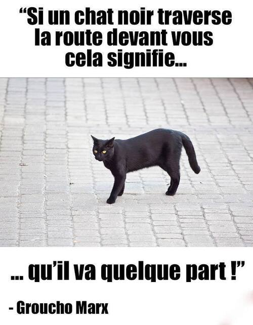 Sagesse et superstition, méditions