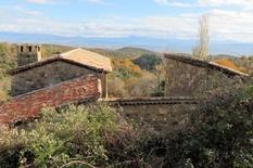 "28 novembre 2019 - Les ""Merles "" en Ardèche"