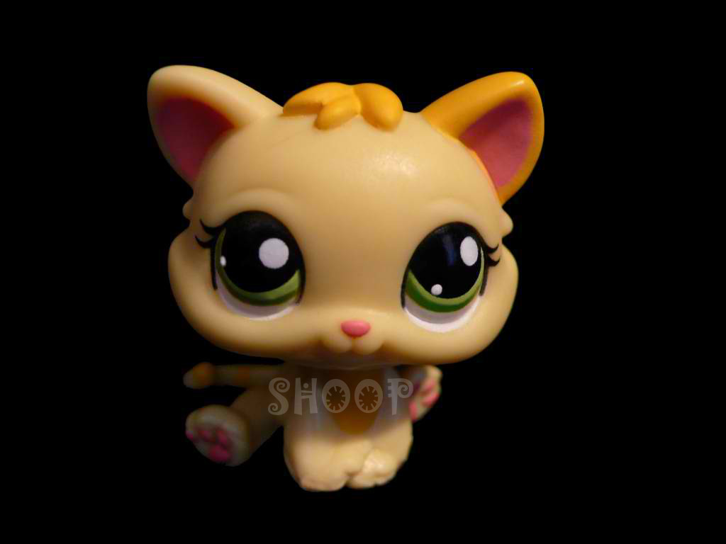 LPS 1649