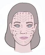 Cap sur les cosmétiques bio