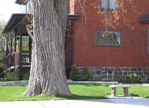 petit-banc-arbre.jpg