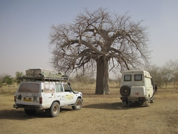 mali piste kiffa kayes 8 photo traditionnelle avec baobab
