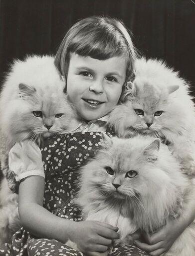 04 - Des chats et des enfants