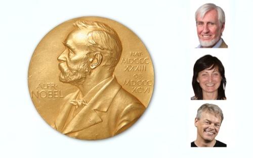 Le rix Nobel 2014 de médecine recompense la découverte du GPS cerebral