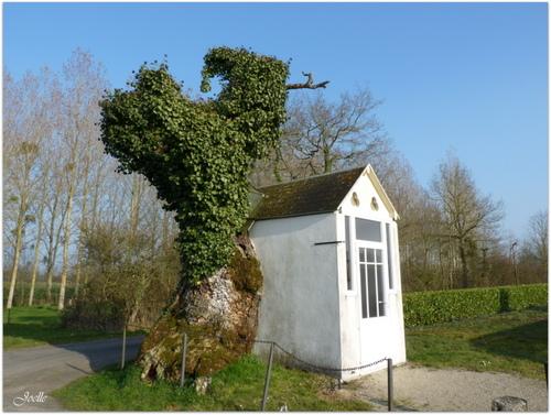 chapelle arbre chêne vendée