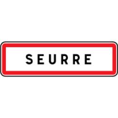 21250 Seurre