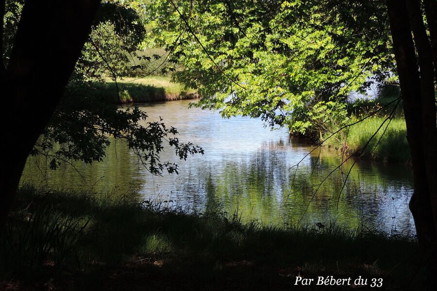 Le Parc Floral - les pays (1)- 33