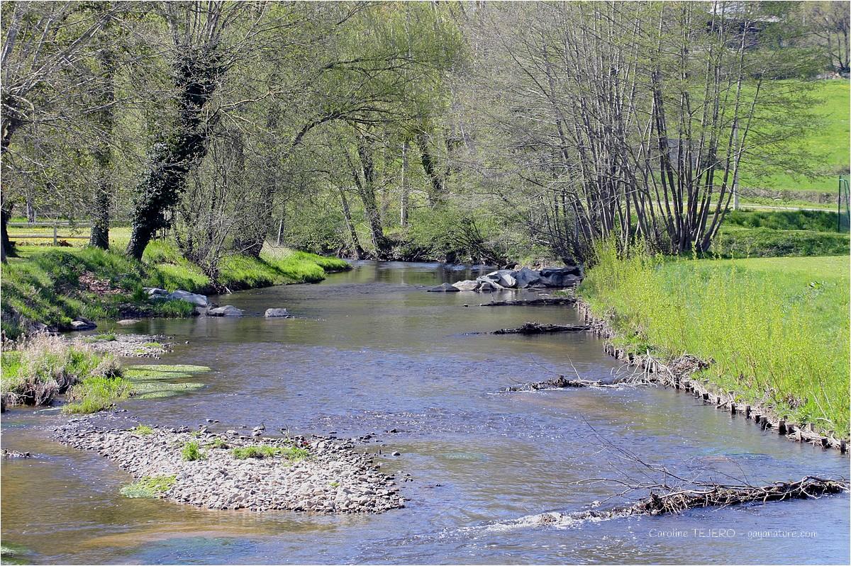 Rivière traversant mon village