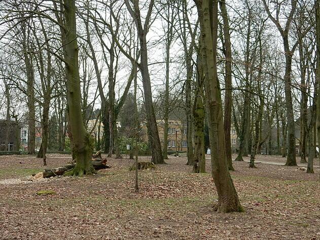 Parc Hauwaert