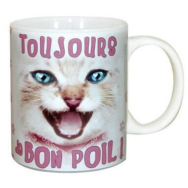 """Résultat de recherche d'images pour """"chat en pyjama  humour"""""""