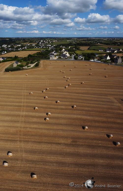 Au dessus d'un champ de blé...