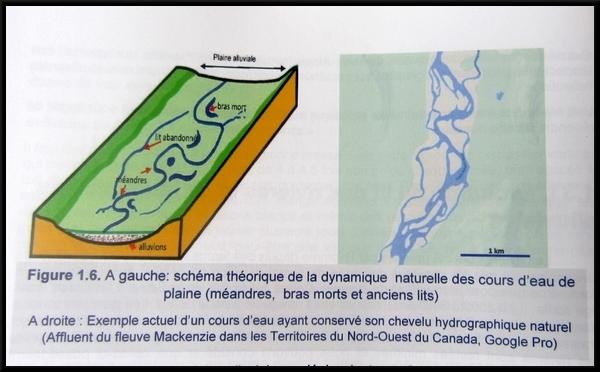 """""""Si les truites pouvaient parler"""", une conférence passionnante sur la gestion des rivières en Châtillonnais, par Pierre Potherat"""
