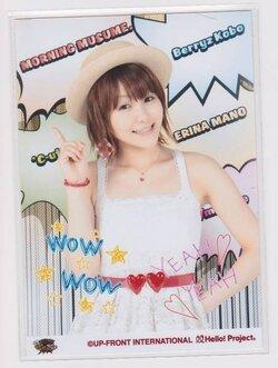 Hello!Project 2011 Summer ~Nippon no Mirai wa WOW WOW WOW & YEAH YEAH Live~