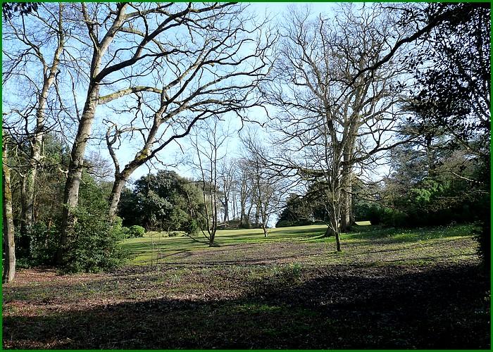 Le Bois des Moutiers - Suite et fin de la visite.
