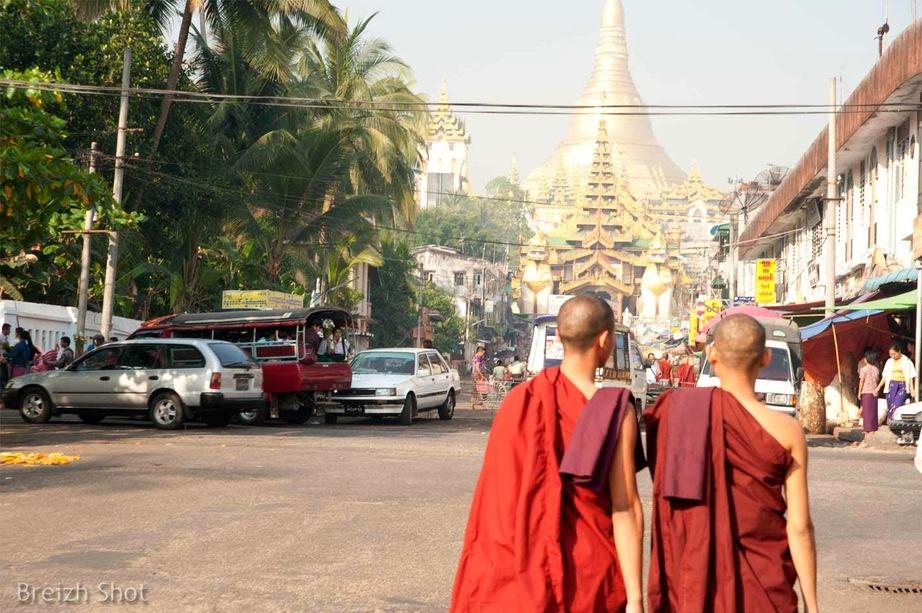 moines bouddhistes - Shwedagon
