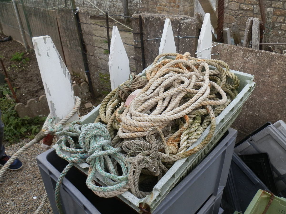 quelques objets du bords de mer lors d'une balade à Locmariaker
