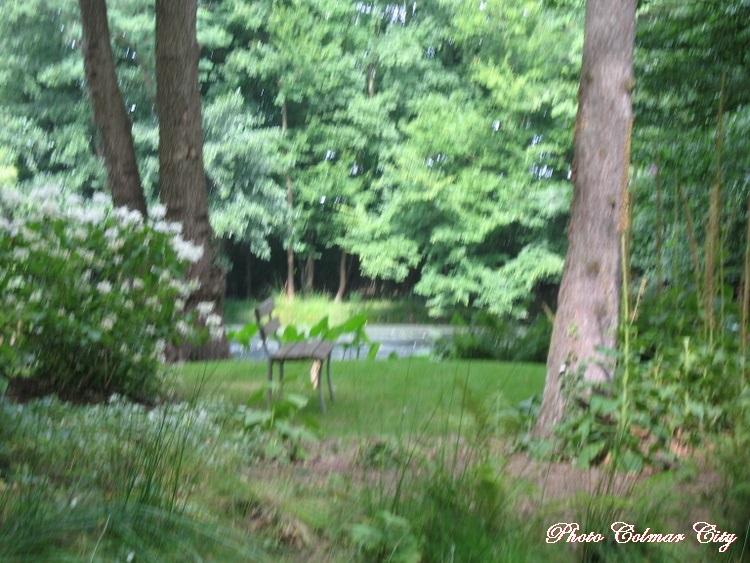 Parc de Schoppenwihr (68) : Le vieil étang