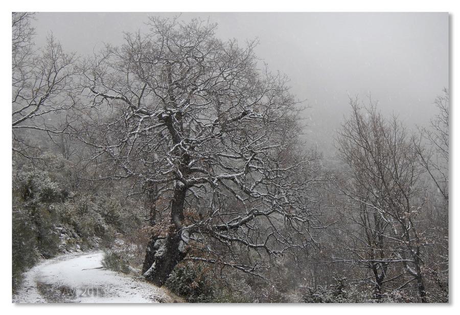 Neige à Villars sur Var