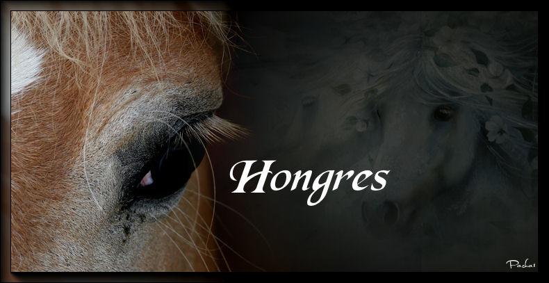 Adoptions Hongres