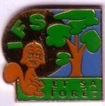 Végétat'IFS : la forêt d'Ifs