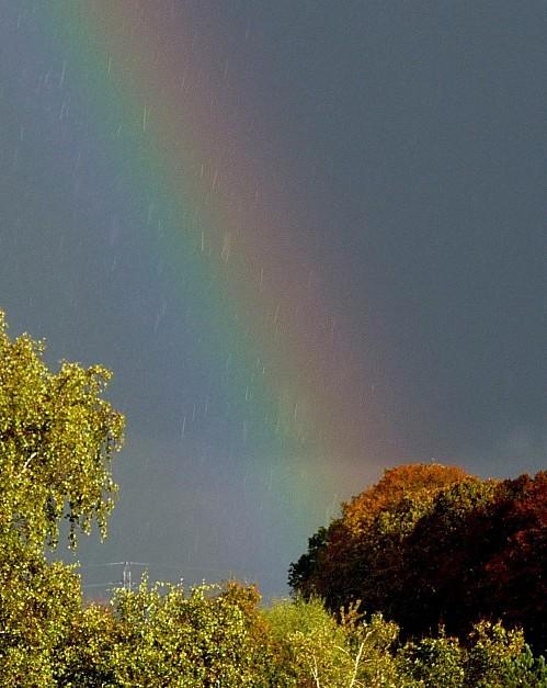 ciels01.11.12-011.JPG