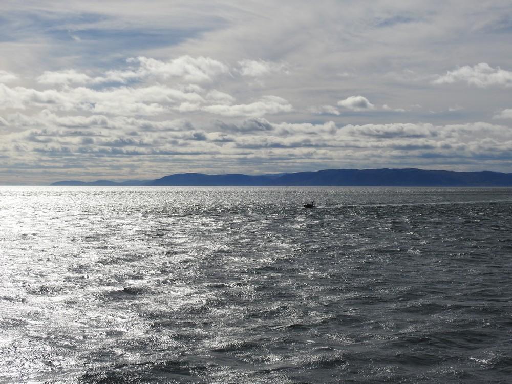 Croisière d'observation des baleines dans la baie de Tadoussac au Canada...