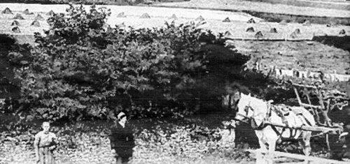 Du cran d'Escalles au cap Blanc-Nez en passant par l'ancien vigneau