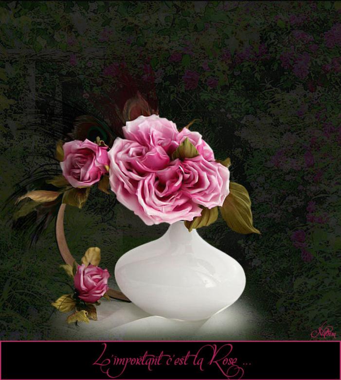 La Rose à l'honneur