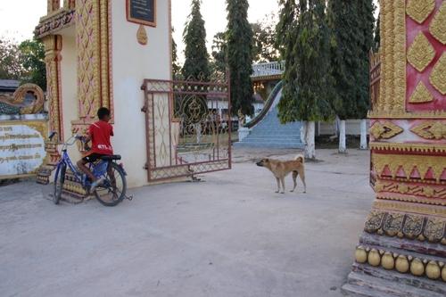 Dans l'île de Khong : Ban Muang Khong