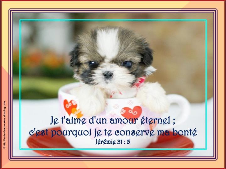 Top Je t'aime d'un amour éternel - Jérémie 31 : 3 - Ecrin2moncoeur LR96