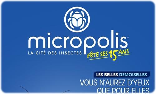 [Shooting] - Visite de Micropolis