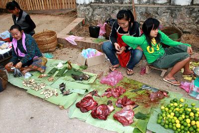 Blog de images-du-pays-des-ours :Images du Pays des Ours (et d'ailleurs ...), Viande de brousse - Marché de jour à Luang Prabang - Laos