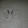 Un petit chat ^^