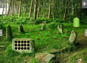 Jouer à Trekking rock forest escape