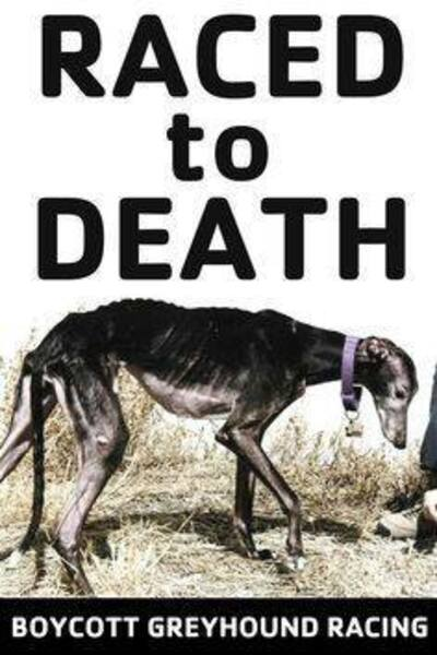 Comment aider pour le sauvetage des greyhounds de Macao / SOS Parrainage