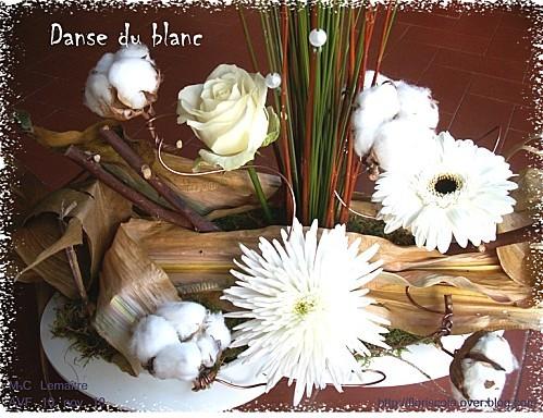 AVF 11 10 10 Danse du blanc