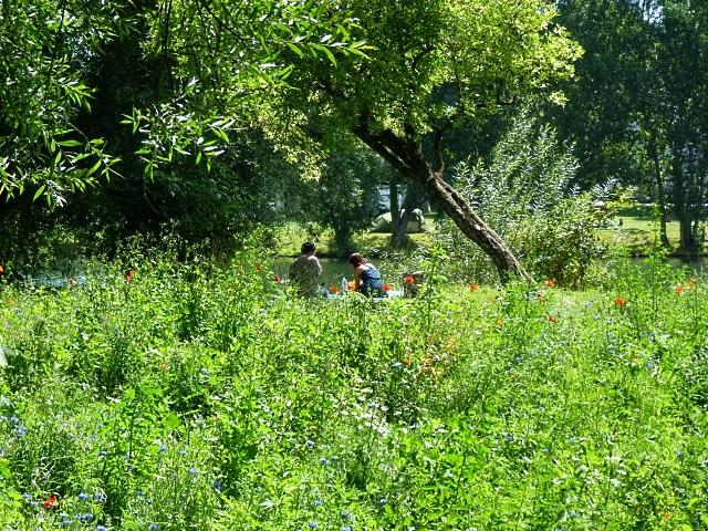 Pique-nique à Metz 1 Marc de Metz 02 08 2012
