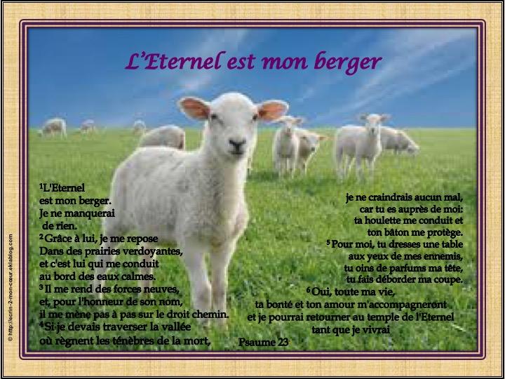 L'Eternel est mon berger - Psaumes 23