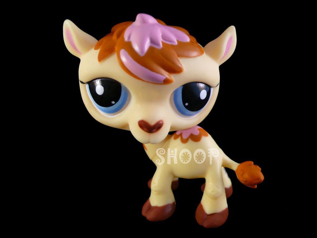 LPS 2579