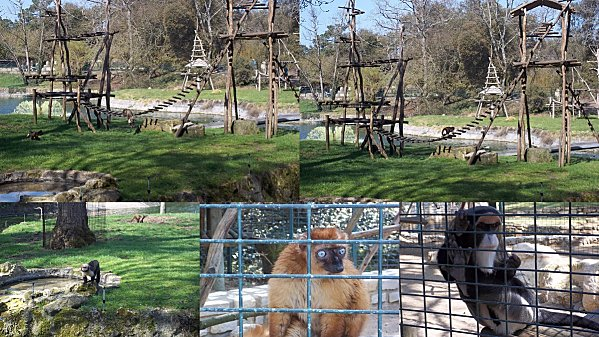 2012-03-26-zoo7.jpg