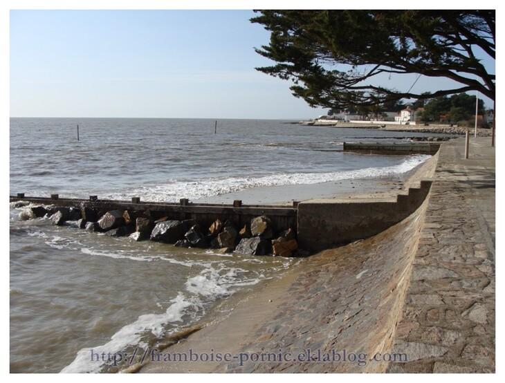 Sentier du littoral aux Moutiers en Retz