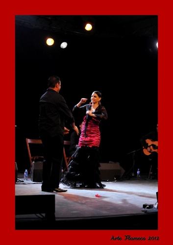 Arte Flamenco 2012 - Mont de Marsan -