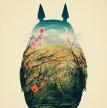 Série 1 .Totoro.
