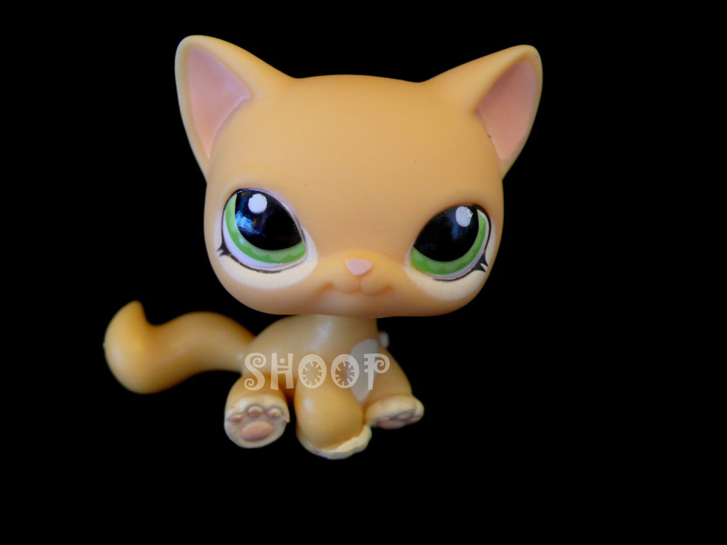 LPS 1162